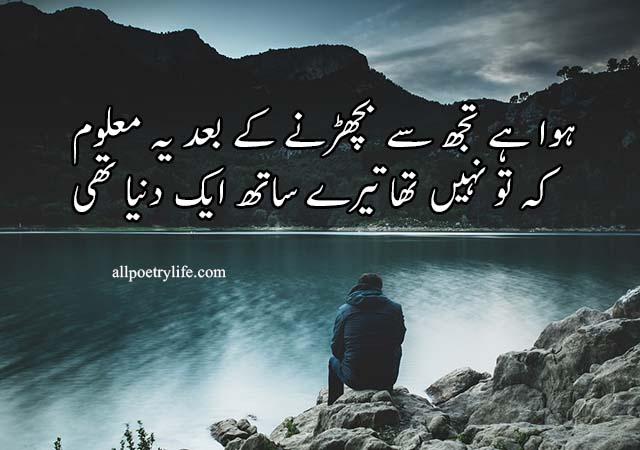 Howa Hai Tuj Se Becharne Ke Baad Yeh Mehloom | poetry status for whatsapp in urdu quotes