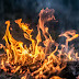 Έντονη ανησυχία για τις πυρκαγιές «ζόμπι» – Τι είναι