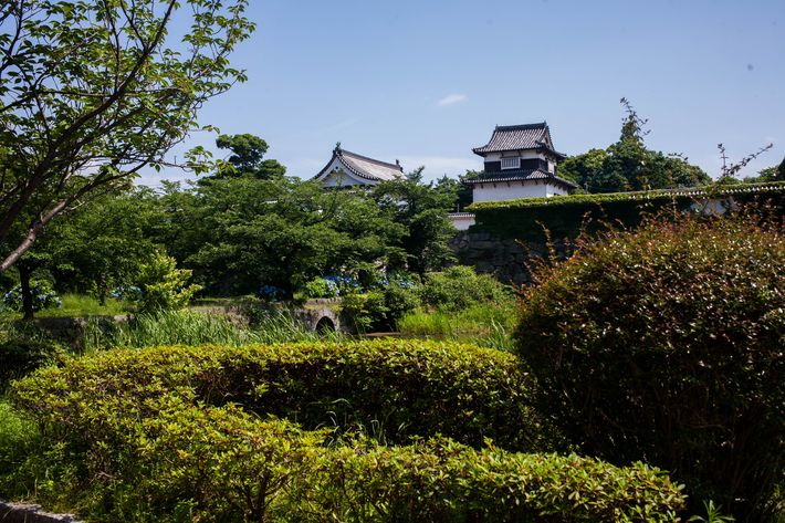 Fukuoka travel guide: castle ruins