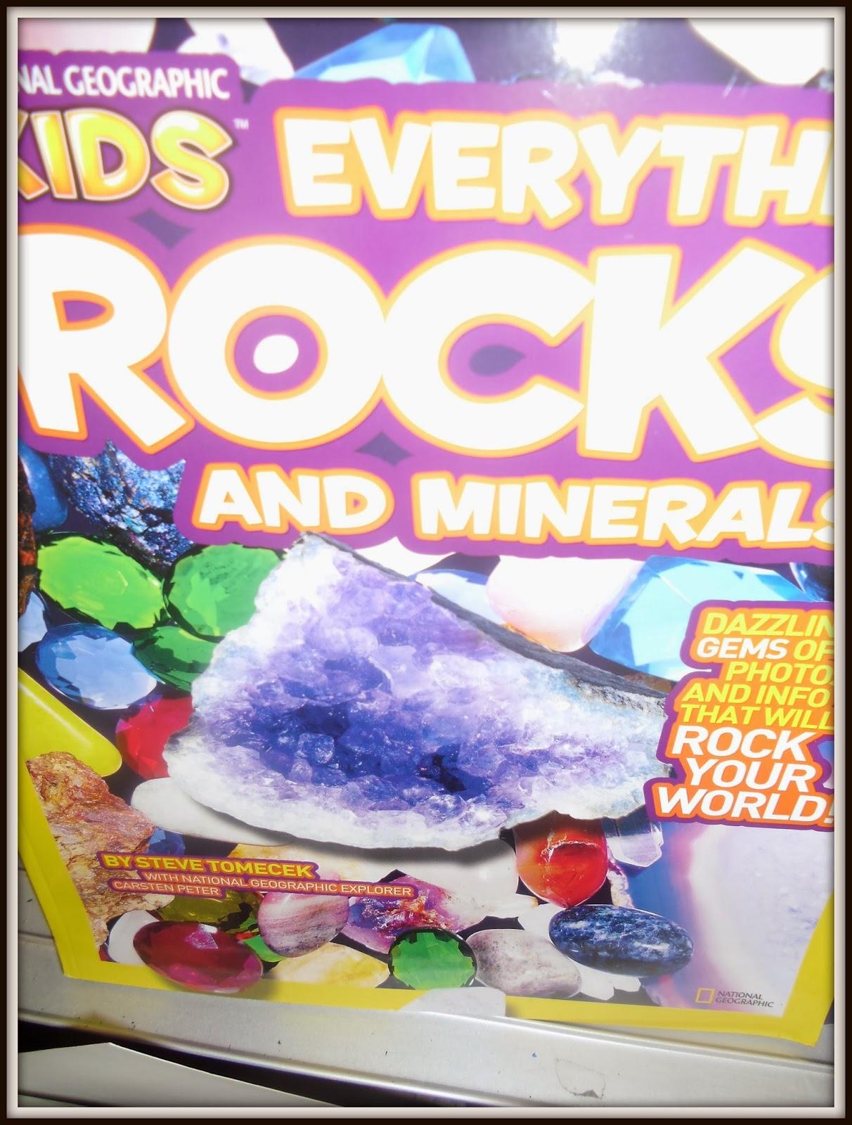 Patties Classroom Rock Cycle Activities