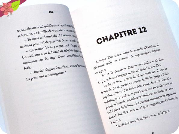 Eko - La pierre d'océan  De Benoît Grelaud