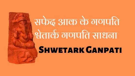 सफेद आक के गणपति | श्वेतार्क गणपति साधना | Shwetark Ganpati sadhna |