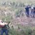 (video) PERSECUCIÓN Y BALACERA: DOS SAENZPEÑENSES DETENIDOS EN ZONA RURAL