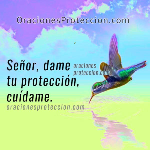 Oración corta, Dios te pido protección al salir, aleja el peligro, Señor, líbrame del mal. Oraciones  para que Dios me proteja por Mery Bracho