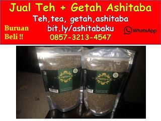 0857-3213-4547 Cara Membuat Minuman Teh Daun Ashitaba