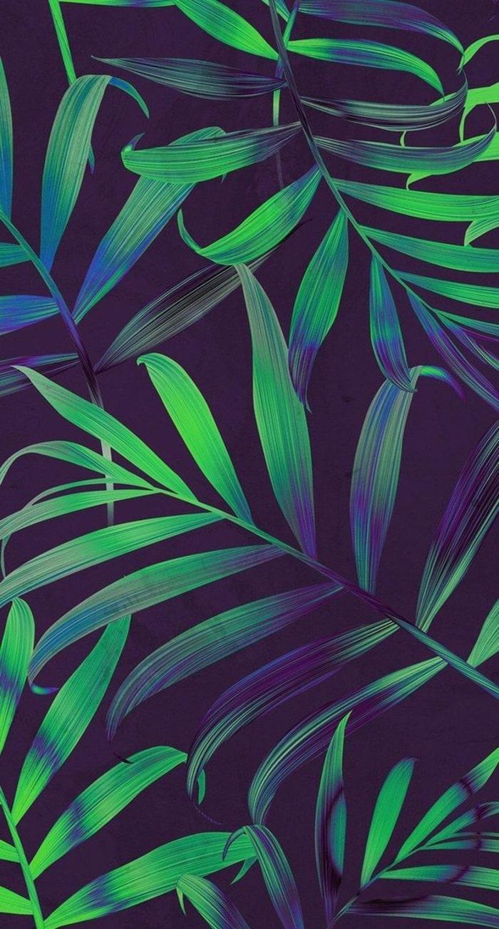 Wallpaper, sfondi iPhone, pianta, foglie