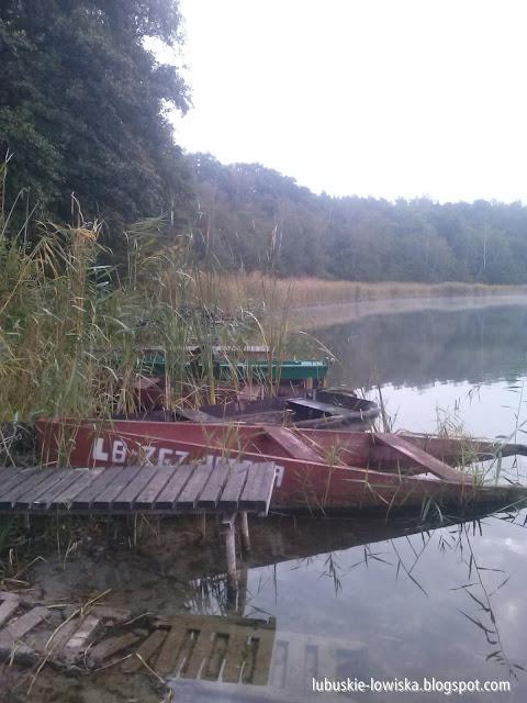 blog wędkarski - lubuskie-lowiska.blogspot.com