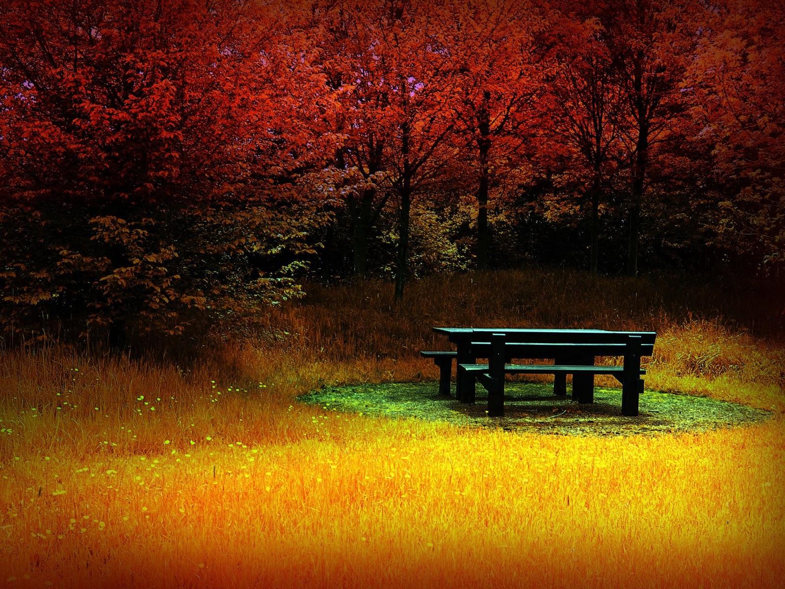 Love Wallpaper Gambar Pemandangan Musim Gugur yang Sangat