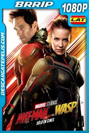 Ant-Man y la Avispa (2018) 1080p BRrip Latino – Ingles