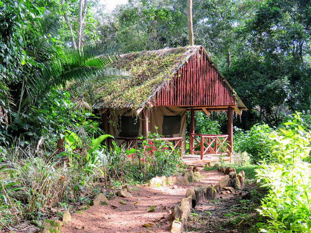 Kibale Forest Camp tent in Uganda