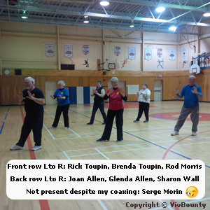 Instructors from Canadian Tai Chi Academy along with practitioners, Brenda Toupin, Rod Morris, Joan Allen, Sharon Wall and Serge Morin kindly demonstrate the first 15 moves.