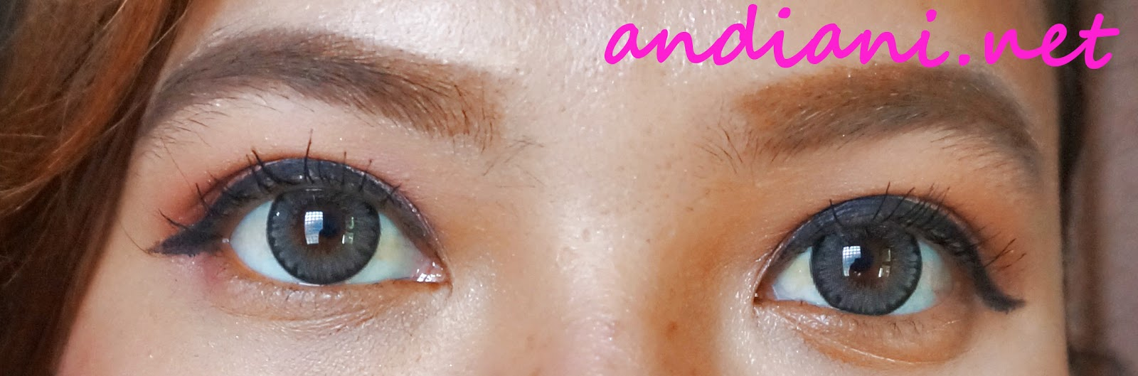 Review Softlens Exoticon A Grey Andianis Beauty Journal X2 Ice N8 Grosir