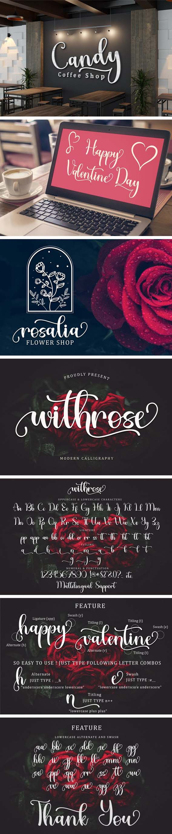 147 Fonts - All Collections - Limited Editions