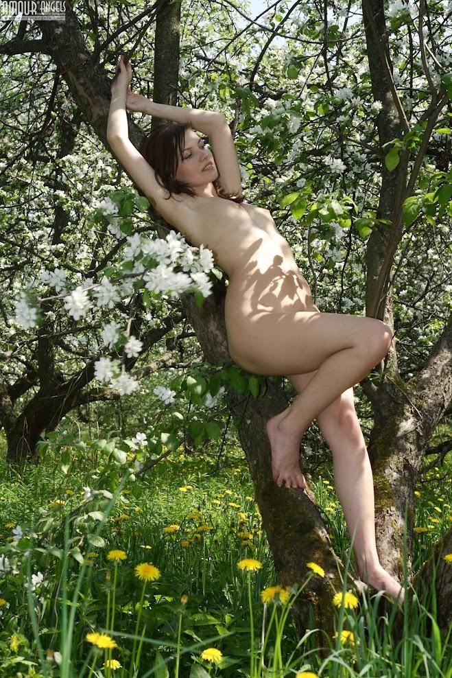 [AmourAngels] Sveta - Apple Trees