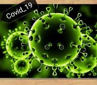 ما هو فيروس كورونا الجديد في الصين وما هي أخطاره