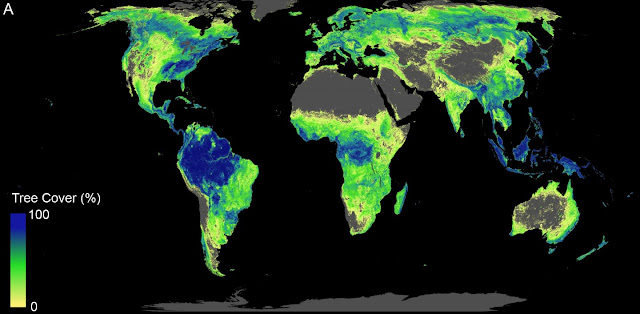 The global tree restoration potential
