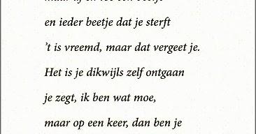 gedicht 65 jaar toon hermans Verjaardagsgedichten 65 Jaar Toon Hermans   ARCHIDEV gedicht 65 jaar toon hermans
