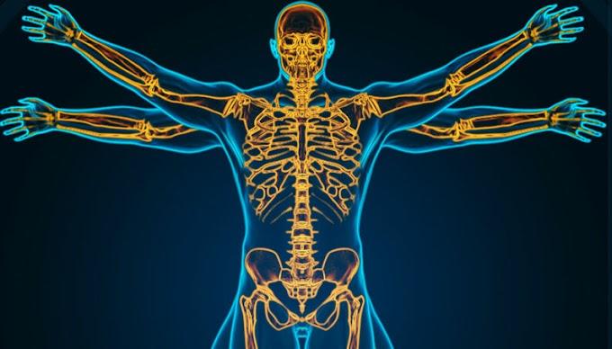 20 Fatos aleatórios sobre o corpo humano que provavelmente você desconhece