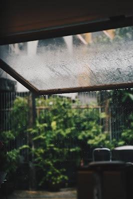 قطرات المطر على النافذة