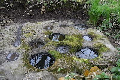 The Nine Hole Stone, Offaly, Ireland