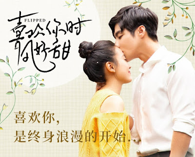 Download Drama China Flipped Subtitle Indonesia
