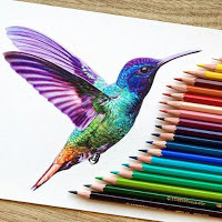 Colorful drawn bird next to color pencils
