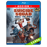 Escuadrón suicida: Deuda infernal (2018) 4K UHD Audio Dual Latino-Ingles