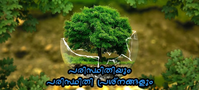 Environment and Environmental Problems