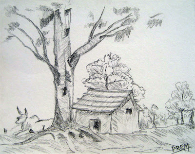 Simple House Landscape with Trees