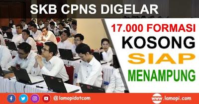 Kalah Saing SKB CPNS, 17.000 Formasi Kosong Bisa Anda Tempati