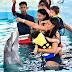 """Espectacular, el parque acuático """"Ocean World"""" y su oferta de Verano"""