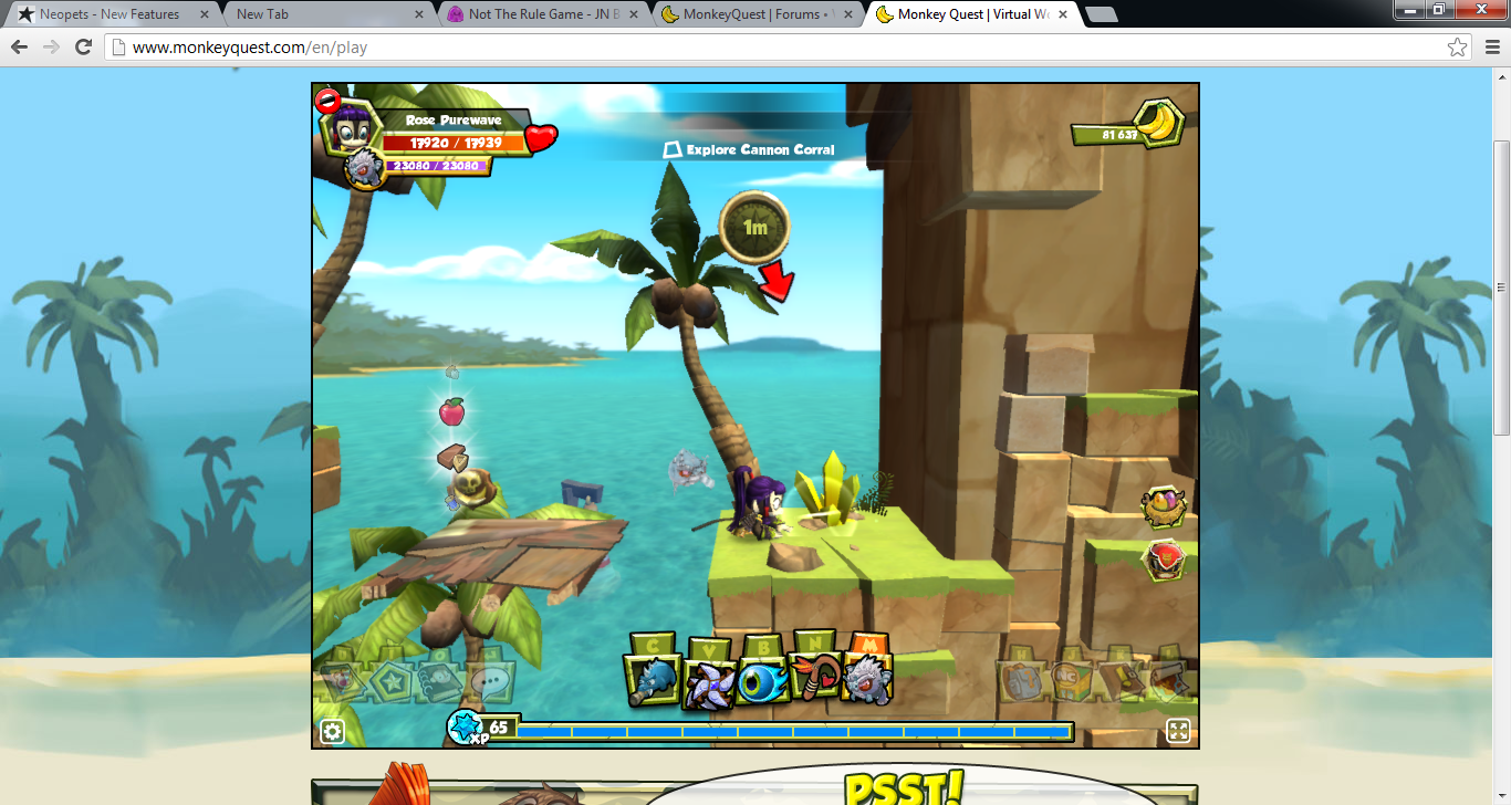 monkey quest codes for pets 2013