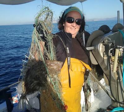 Gallos de San Pedro en las excursiones de pesca turismo y turismo marinero de Mallorca y Menorca