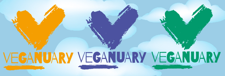 Formidable Joy | Formidable Joy Blog | Veganuary 2017 Conclusion | Vegan | Food Challenge | Veganuary