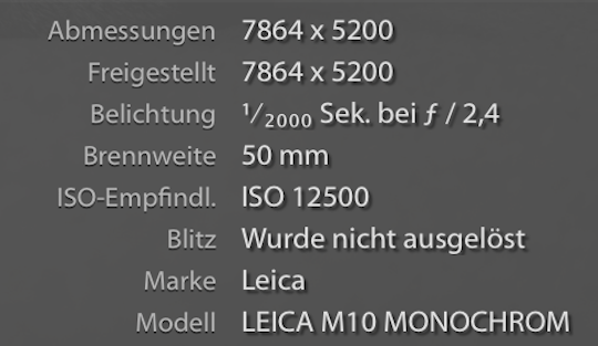 Параметры фотографии, полученной с камеры Leica M10 Monochrom