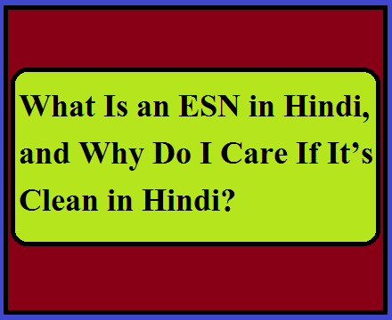 What Is an ESN in Hindi, and Why Do I Care If It's Clean in Hindi?