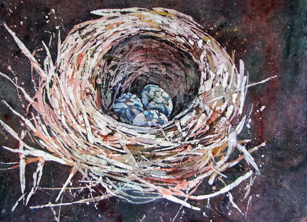 birds nest texture