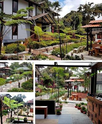 Casa Loma Hotel Cameron Highland lanskap