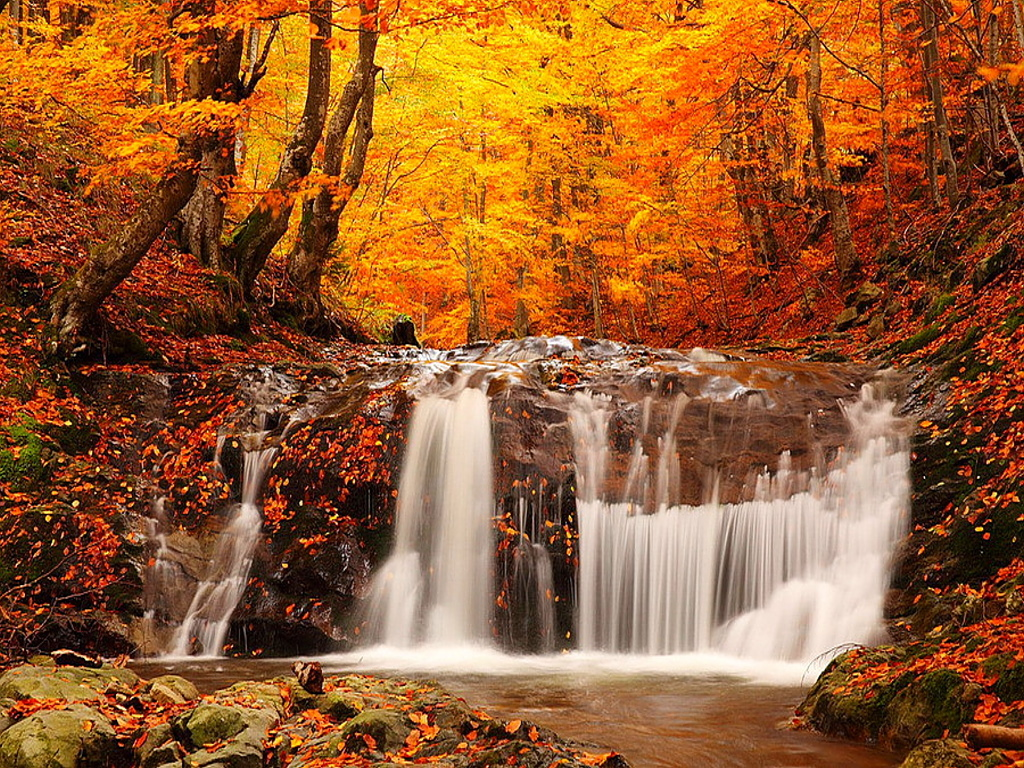 Falling Leaves Wallpaper Screensavers Top 30 Beautiful Water Falling Wallpapers In Hd