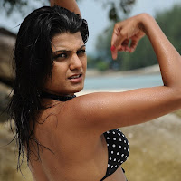 wet winning tashu kaushik latest hot spicy photos stills in beach