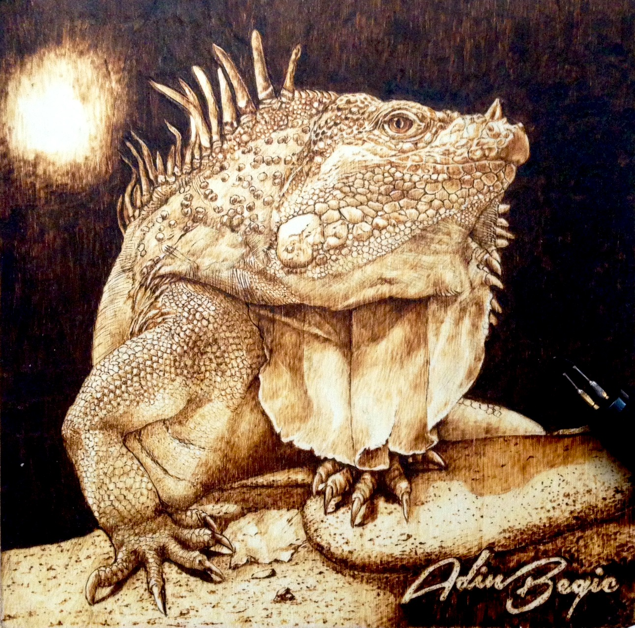 My Pyrography Pyrography Art By Adin Begic Wood Burning