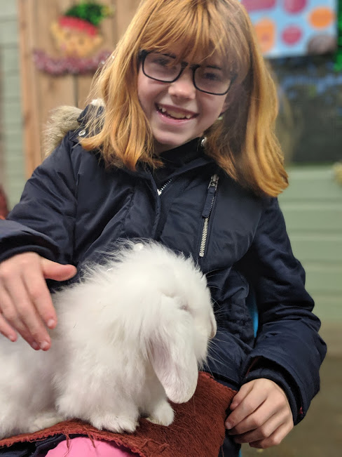Christmas & Santa at Whitehouse Farm - A Review  - bunny stroking