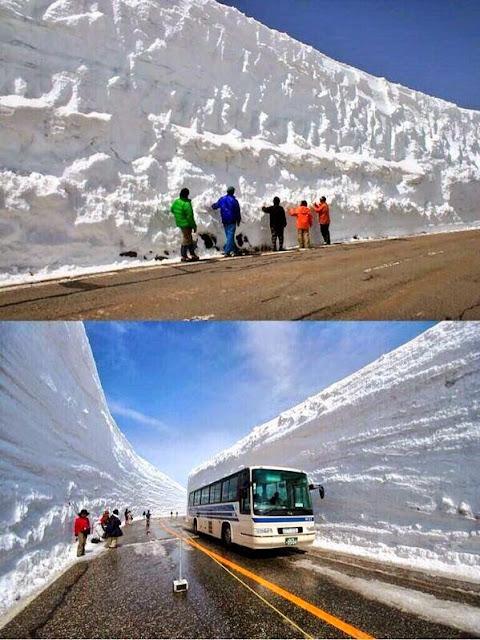 سور مدهش من الثلج يصل أرتفاعه إلى 20 متراً يغطي أحد الطرق في جبال الألب اليابانية !