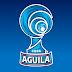 Listos equipos que competirán en los octavos de final de la Copa Águila: DEPORTES TOLIMA avanzó como el mejor segundo