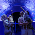 The Shore Oceanarium Phase 2 Promises An All New Adventure Of Ocean Journey