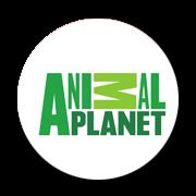 Animal Planet Hindi Live| Hindi Channel - Urdu MEX Urdu News