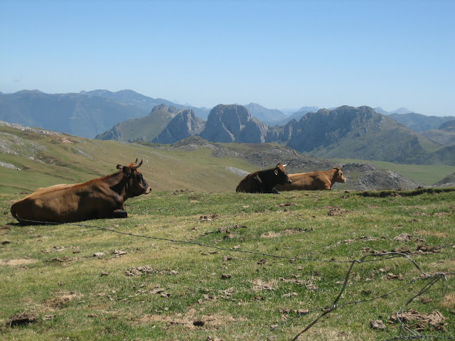 Rutas Montaña Asturias: Vista de la Mesa desde Collado Ronzón