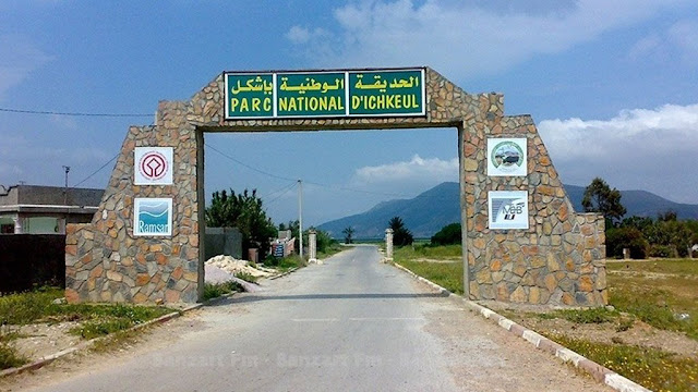 المحميات الطبيعية في تونس