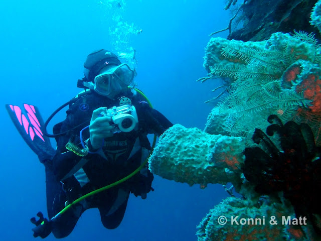 Scuba diving, u/w photography, sulawesi,