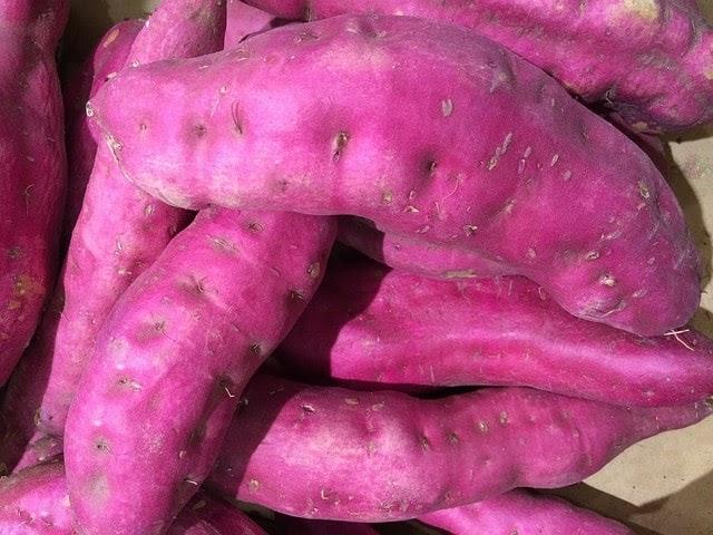 7 Tips Makanan Sehat Vegetarian Yang Patut Dicoba!